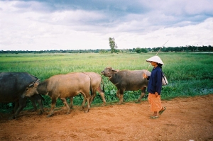 2005-9usi-thai