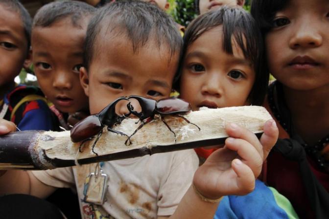 Ethnic Minorities in Thailand