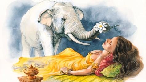 elephants 3